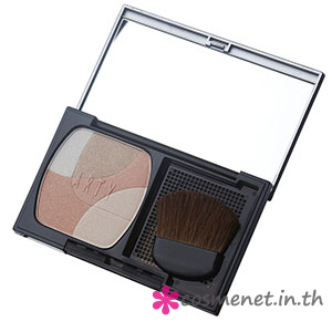 SHIMMERING COMPACT POWDER