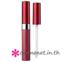 Vivoke LIP GLOSS