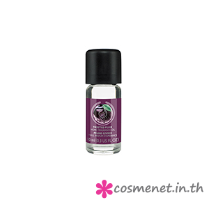 Frosted Plum Home Fragrance Oil