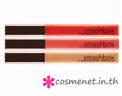 DESERT CHIC LIP ENHANCING GLOSS