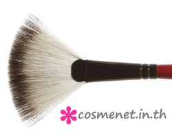 FAN BRUSH # 22