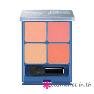 Bright Finish Mixing Blusher
