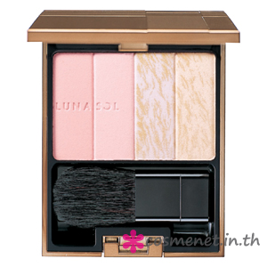 ILLUMINATING HIGHLIGHT WINTER 2013