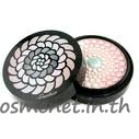 Meteorites Poudre de Perles Illuminating Perfecting Pressed Powder