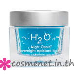Night Oasis Overnight Moisture Lock