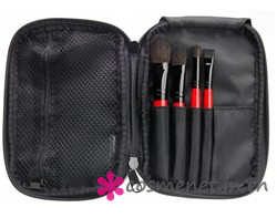 TRAVELER BRUSH KIT
