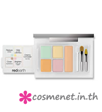 Skin Perfection All-In-One Concealer Kit