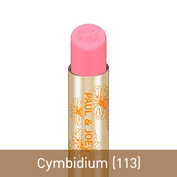 Cymbidium (113)