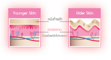Seoul Secret Collagen Peptide